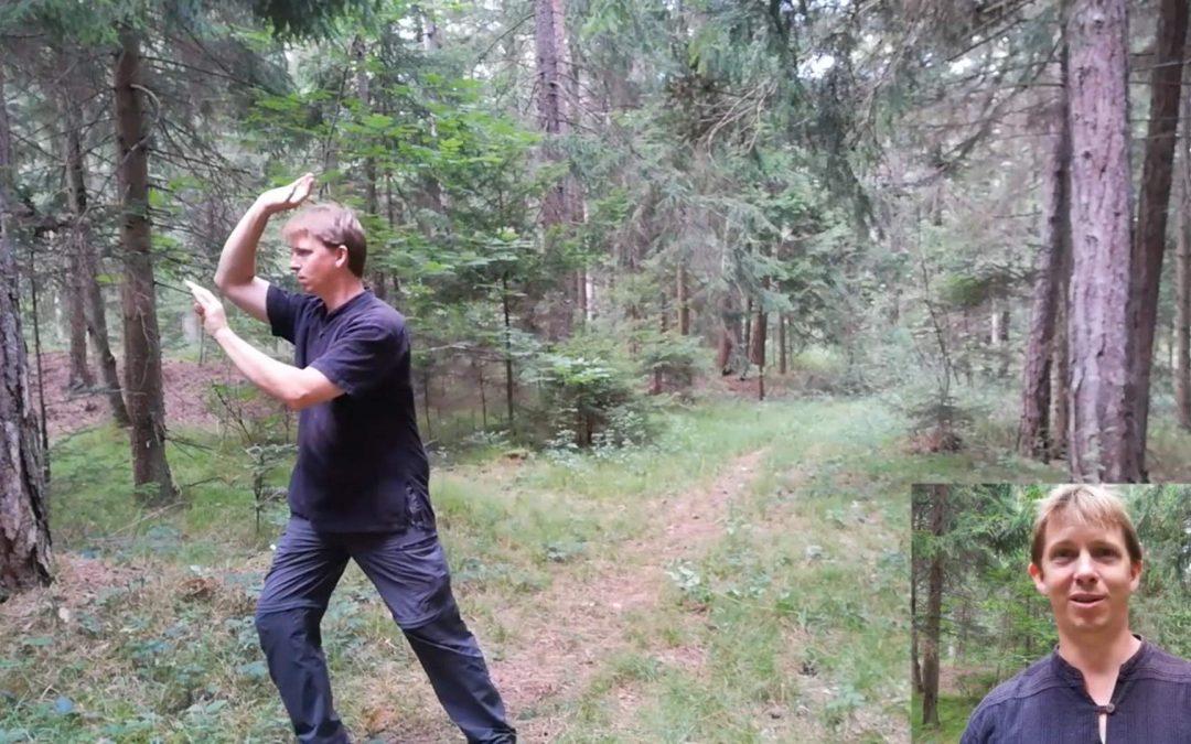 Qi Gong, Tai Chi und Bogenschießen
